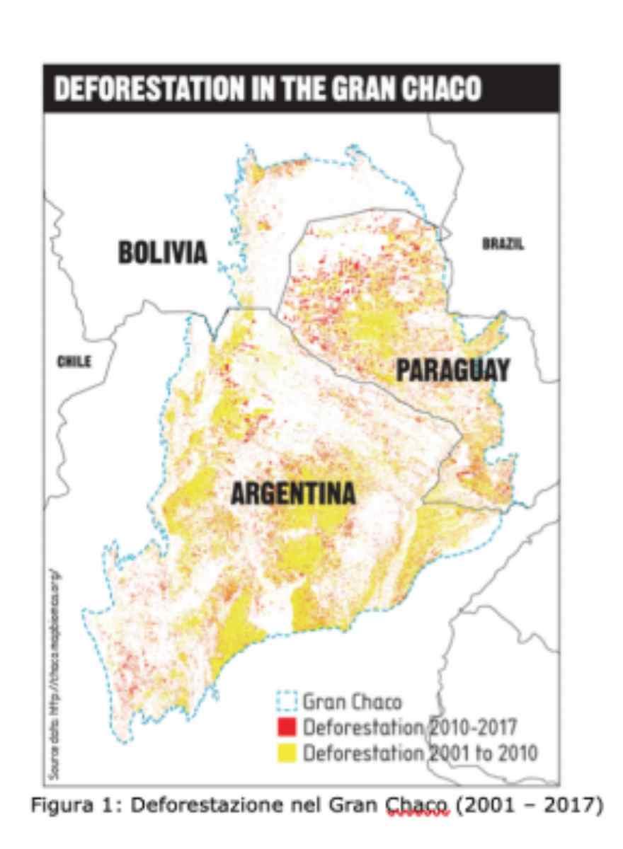 desmatamento chaco mapa