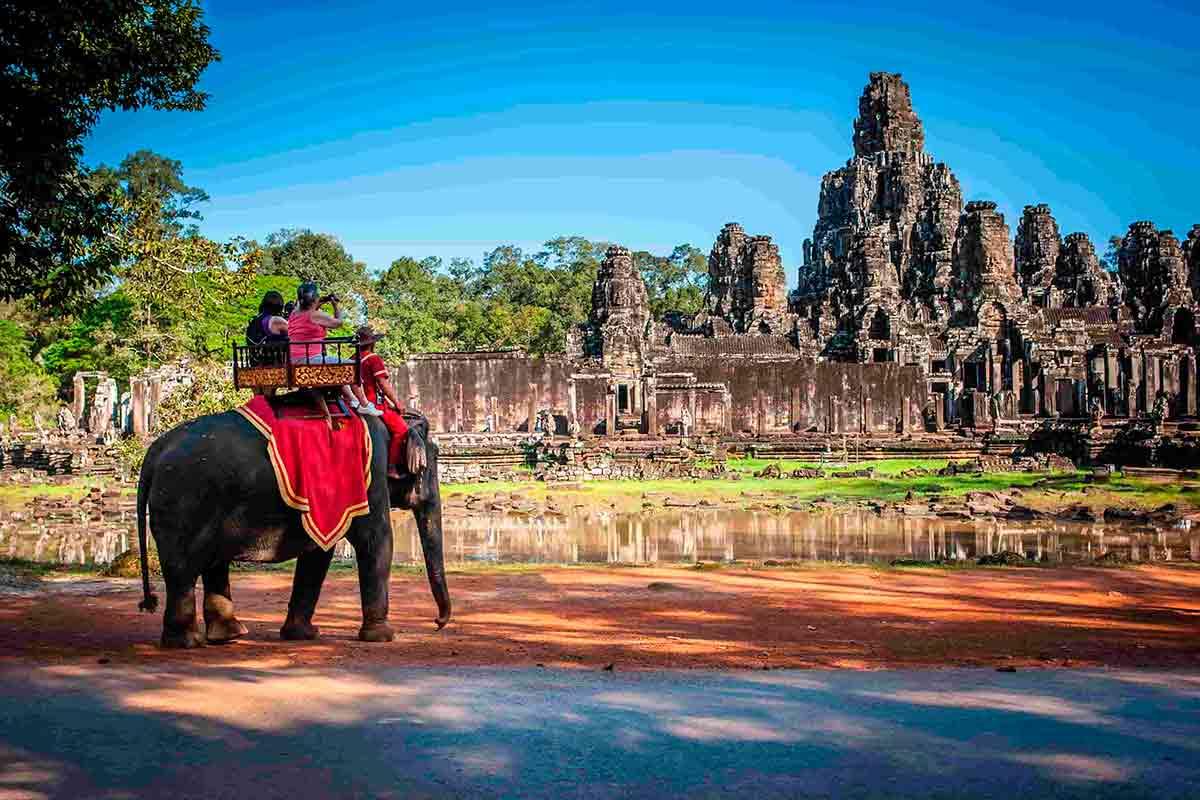 elefante Camboja