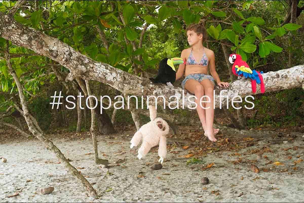 #stopanimalselfies