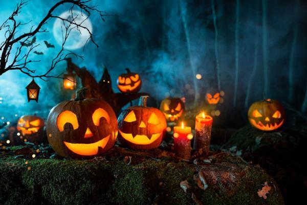Green Halloween: como fazer a festa das bruxas sustentável?