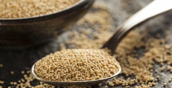 Amaranto: semente milenarque pode reduzir a fome no mundo