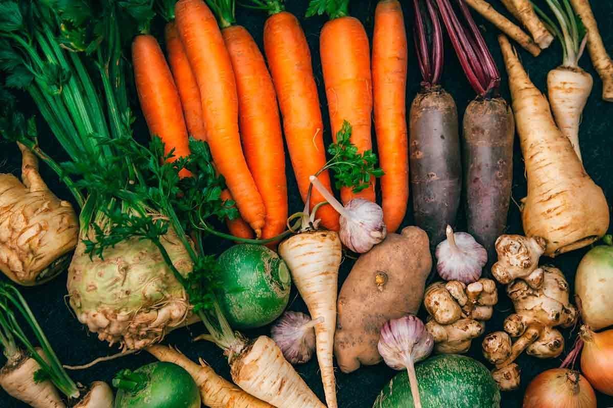 Prefeito investe no fortalecimento da agricultura familiar: alimento para todos