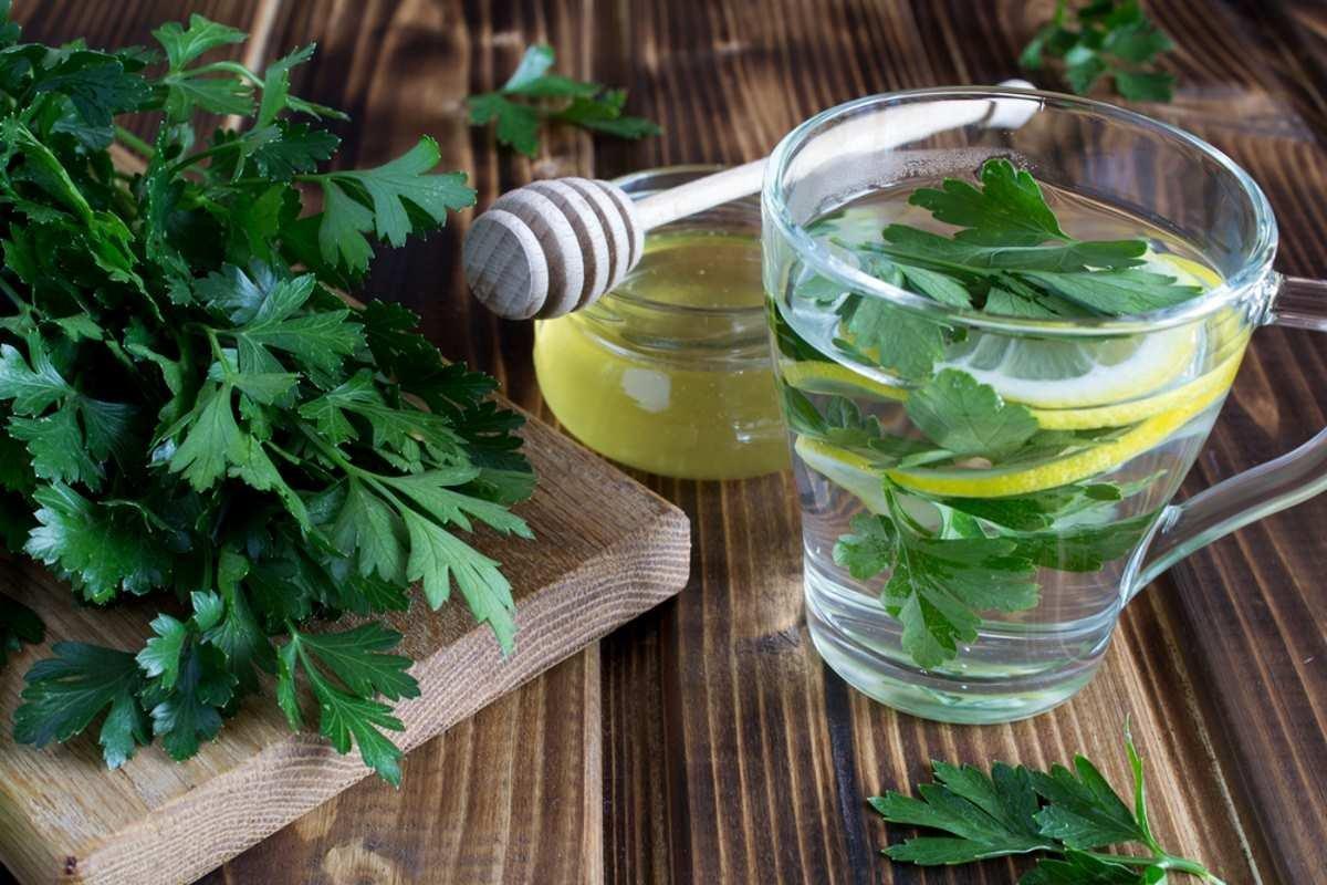 Chá de salsa limpa os rins e emagrece! Receitas e como tomar - greenMe