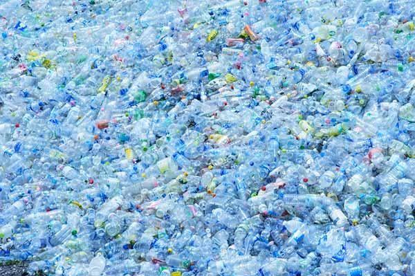 Reciclagem transforma garrafas plásticas em baunilha. Como assim? Isso mesmo!