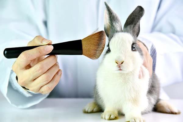 Como saber se os produtos que você usa foram testados em animais