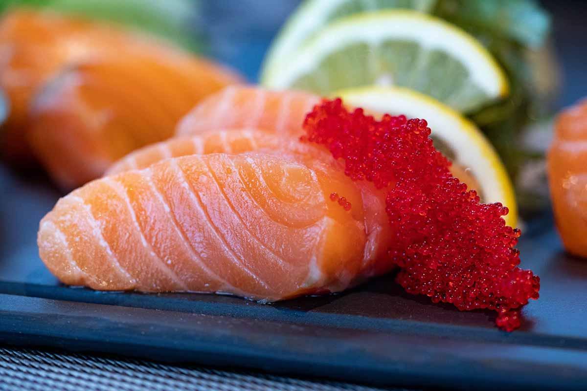 A sushi mania está acabando com os ecossistemas marinhos