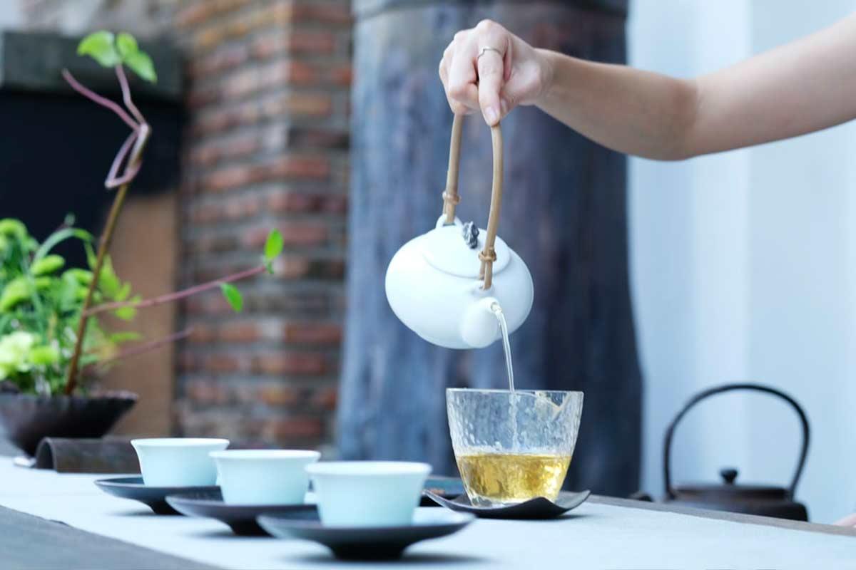O poder dos chás: conheça os tipos de plantas que podem te ajudar no dia a dia