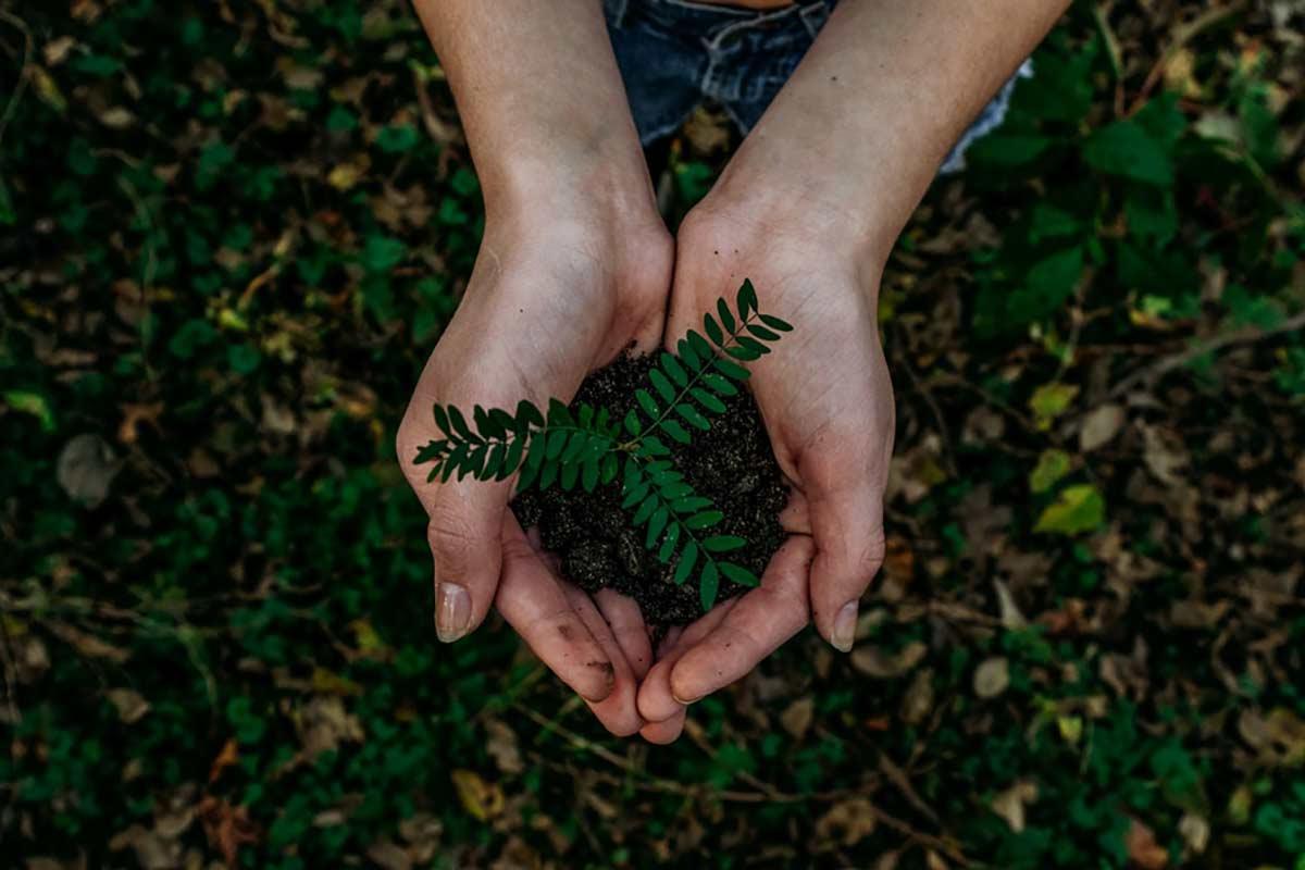 Práticas simples que podem reduzir seu impacto ambientaldentro de casa e ainda economizar dinheiro