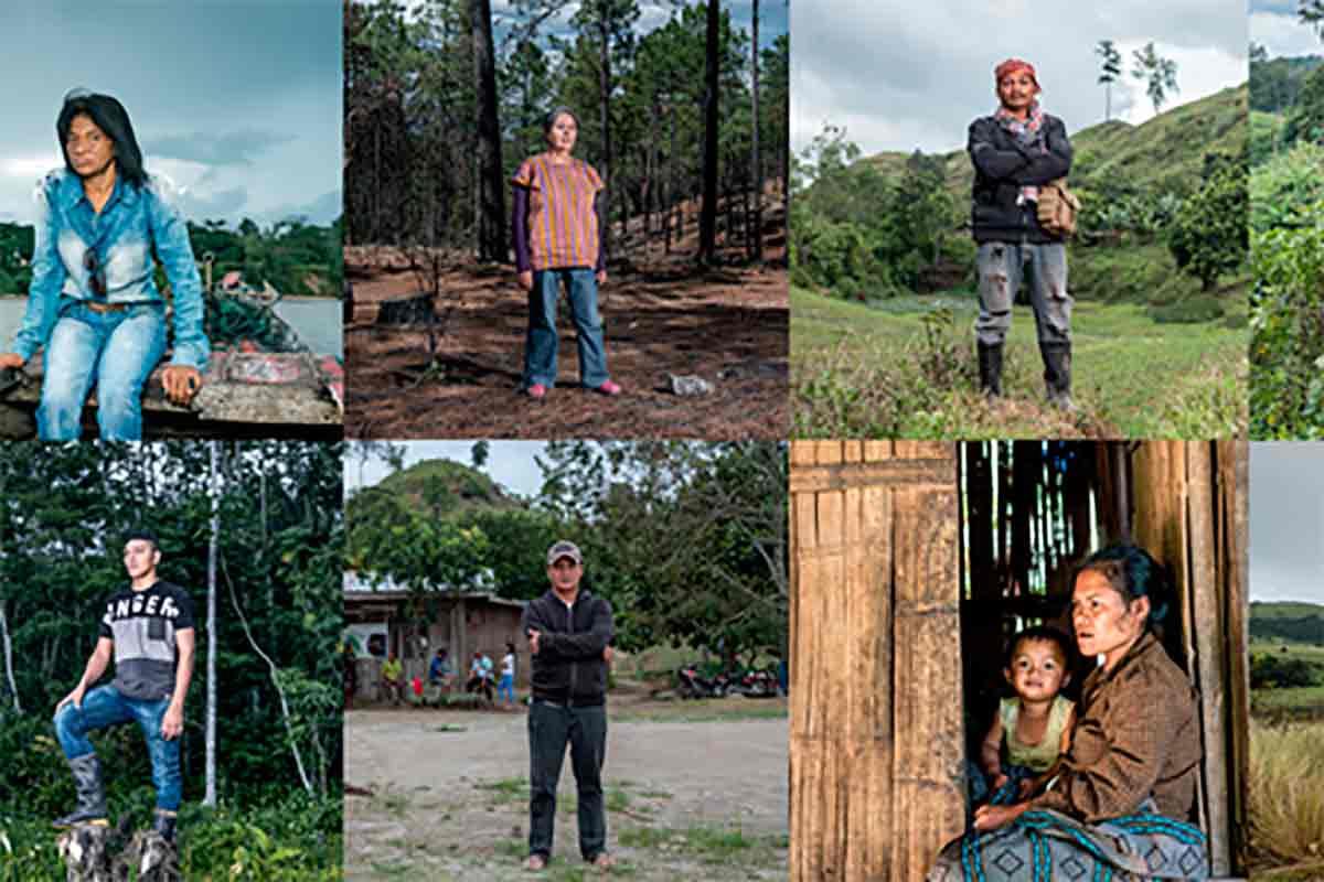 Assassinatos de ativistas ambientais atingem recorde histórico